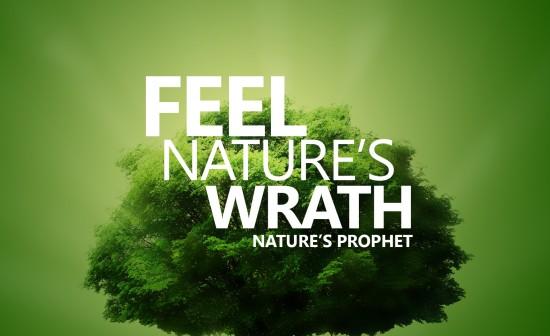 Nature's Prophet pc wallpaper